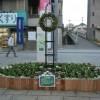 商業地区はシンボル花壇でクリスマス