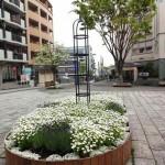 東京FMで中川ルネッサンスプロジェクトを紹介