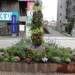 中川シンボル花壇は秋へ変身
