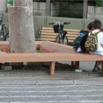 けや木の周りにきれいなベンチ完成