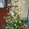 ほっとカフェはクリスマスの装い