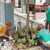 中央遊歩道に23カ所の花壇が完成