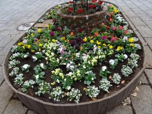 カラフルなシンボル花壇が完成しました