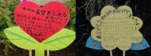 西小6年4組の生徒が花壇につけた立て札です