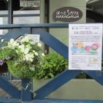 中川ふれあいフェスタ「花かご・コンテスト」