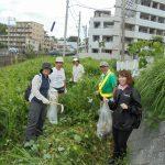 早渕川・老馬谷ガーデン(HRG)用地のクリーン作戦実施