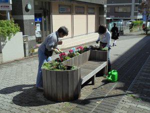 ベンチ花壇の植え替え作業