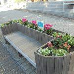 中川駅前商業地区の花壇 NRPメンバーによる冬花への植え替え