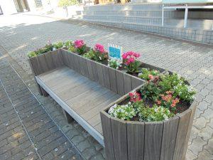 植え替えたベンチ花壇