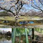 山崎公園愛護会のホームページができました
