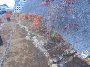 2/4 都市大都市緑化研究会の低木緑化ガーデン