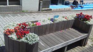 花に囲まれるベンチ