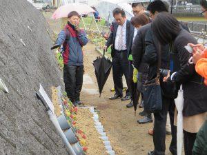 青木君が塩化ビニールパイプを再利用した鉢に多肉植物を植えた作品を説明