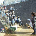 早渕川・老馬谷ガーデン 年末、地域参加で楽しく寒さを吹き飛ばす
