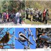 山崎公園愛護会による野鳥観察会が開催されました
