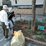中川ルネッサンスプロジェクト 雪による花壇のダメージを修復作業