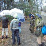 山崎公園の「樹林地の保全」現地ヒアリング実施