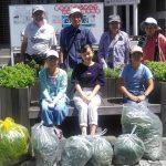 小中学生ボランティアがNRP花壇の手入れに参加