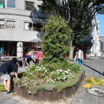 NRP会と子供ボランティア 駅前商業地区の花壇整備と遊歩道の草取り