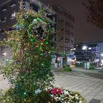 中川駅前商業地区にイルミネーション設置